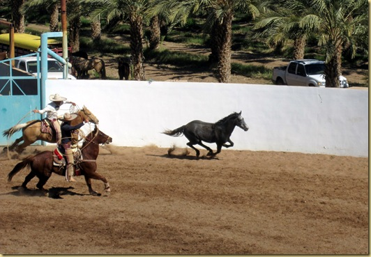 2010-02-28 - MX, Los Algodones - Rodeo de Magana and Bus Trip-60